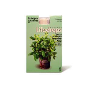 Mastic Gum Lifedrops Mint Sugar free